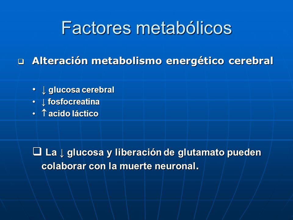 Factores metabólicos Alteración metabolismo energético cerebral. ↓ glucosa cerebral. ↓ fosfocreatina.