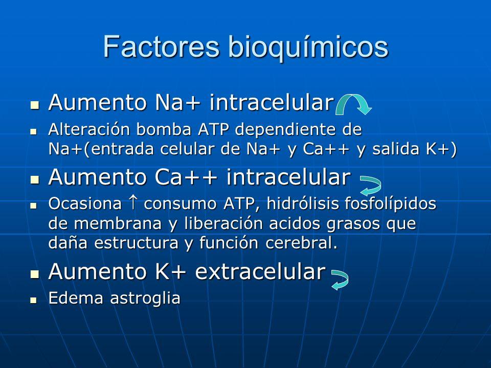 Factores bioquímicos Aumento Na+ intracelular
