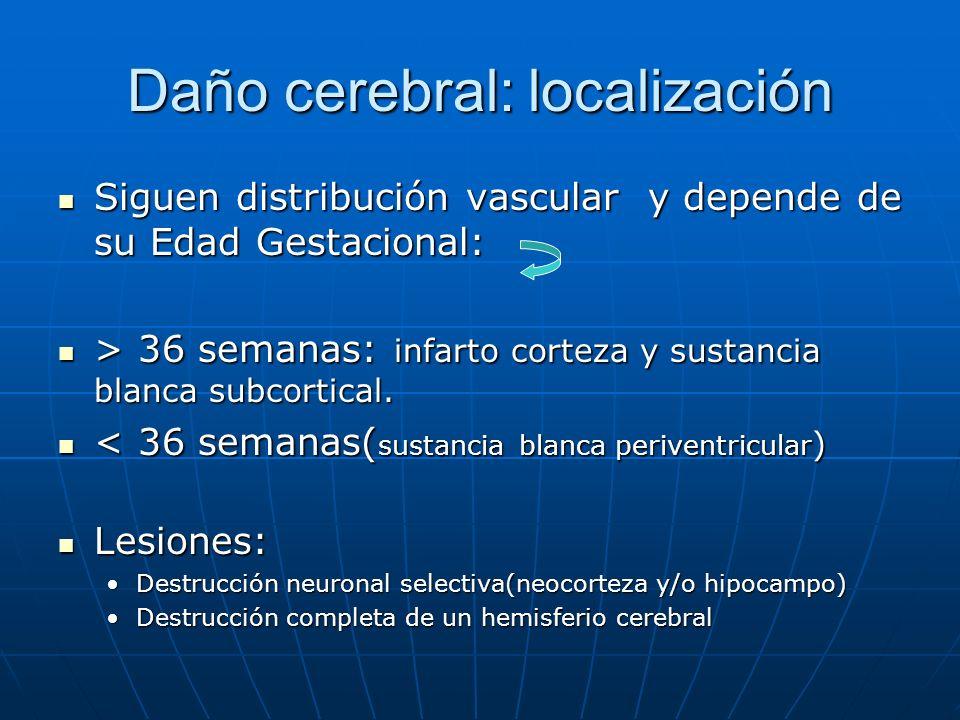 Daño cerebral: localización