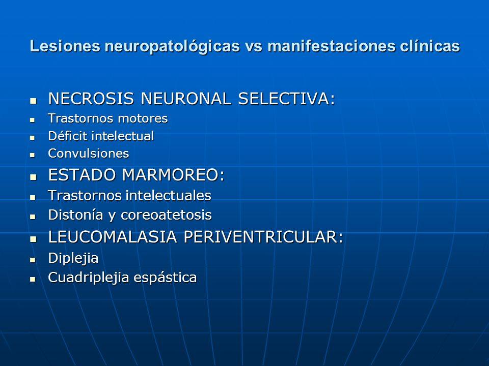 Lesiones neuropatológicas vs manifestaciones clínicas