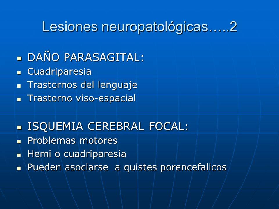 Lesiones neuropatológicas…..2