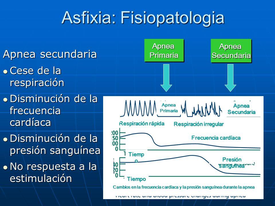 Asfixia: Fisiopatologia