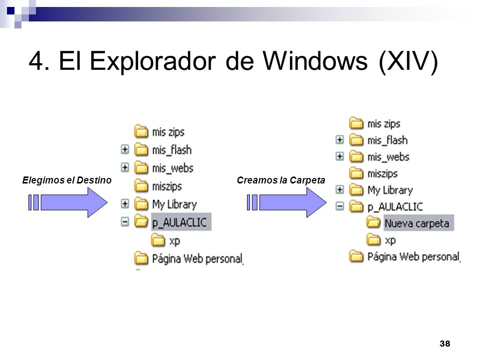 4. El Explorador de Windows (XIV)