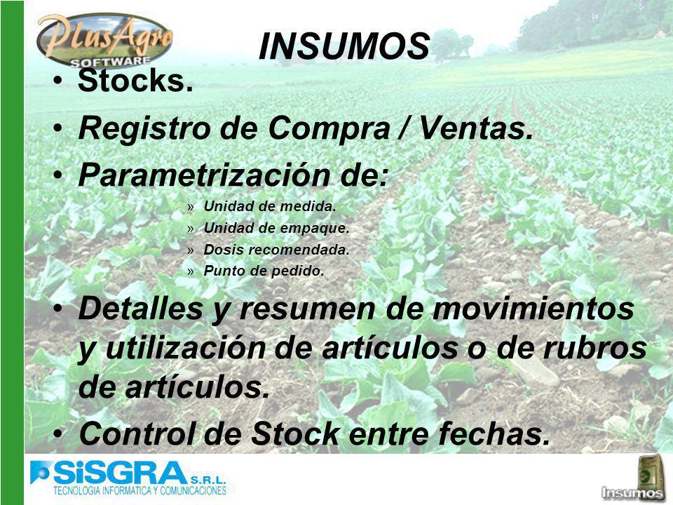 INSUMOS Stocks. Registro de Compra / Ventas. Parametrización de: