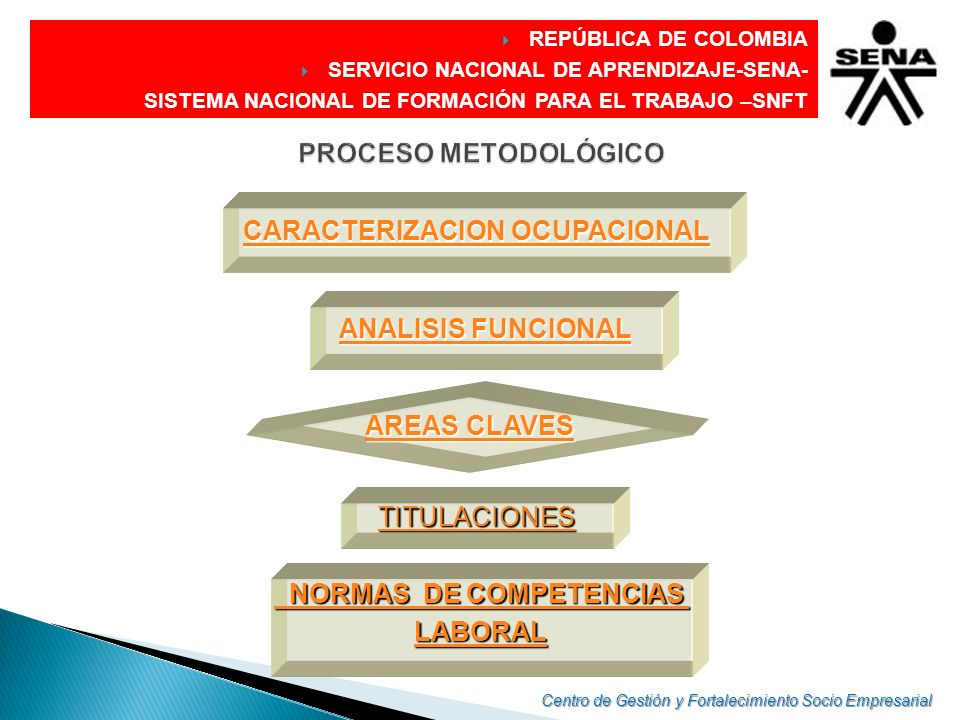 CARACTERIZACION OCUPACIONAL NORMAS DE COMPETENCIAS