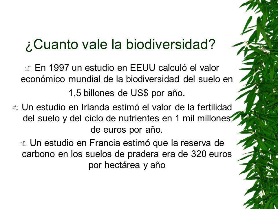 ¿Cuanto vale la biodiversidad