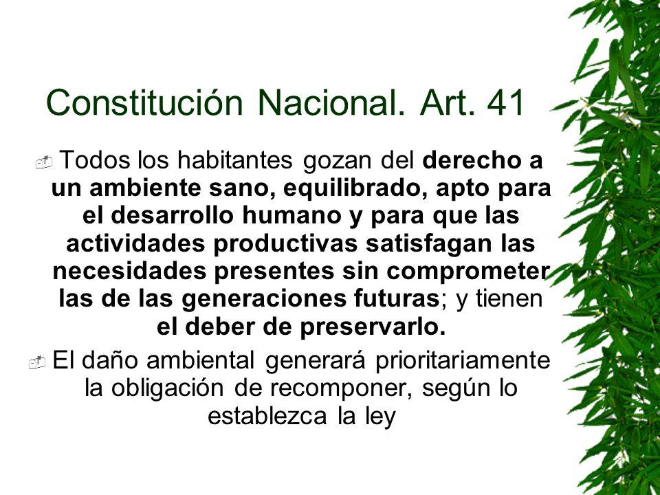 Constitución Nacional. Art. 41
