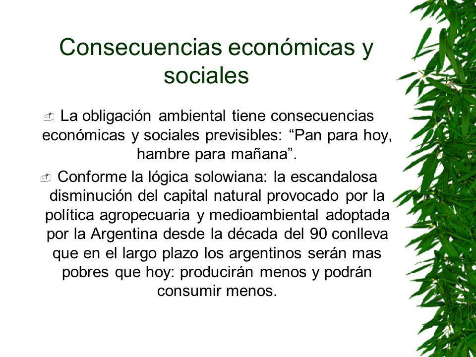 Consecuencias económicas y sociales