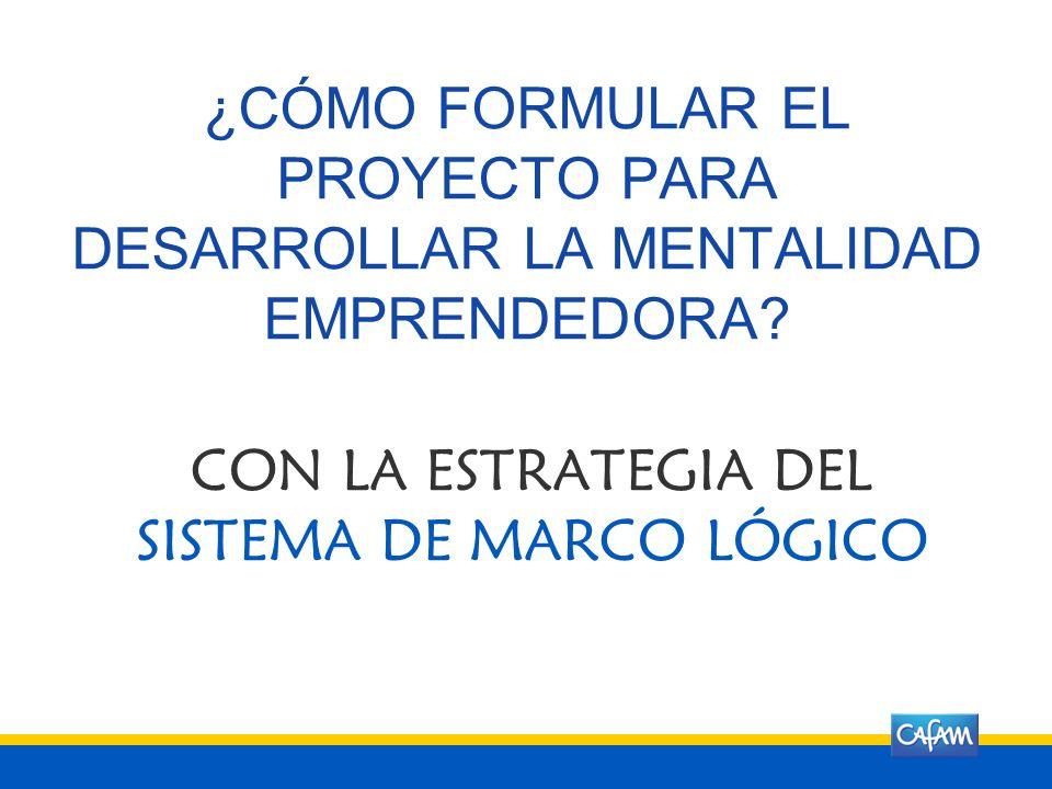 CON LA ESTRATEGIA DEL SISTEMA DE MARCO LÓGICO