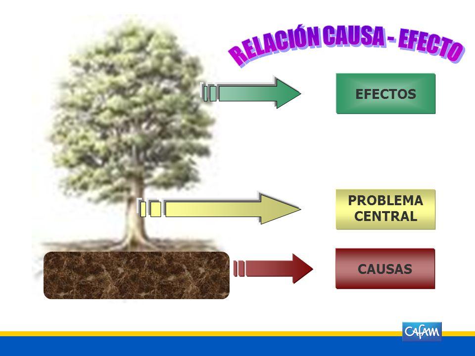 RELACIÓN CAUSA - EFECTO
