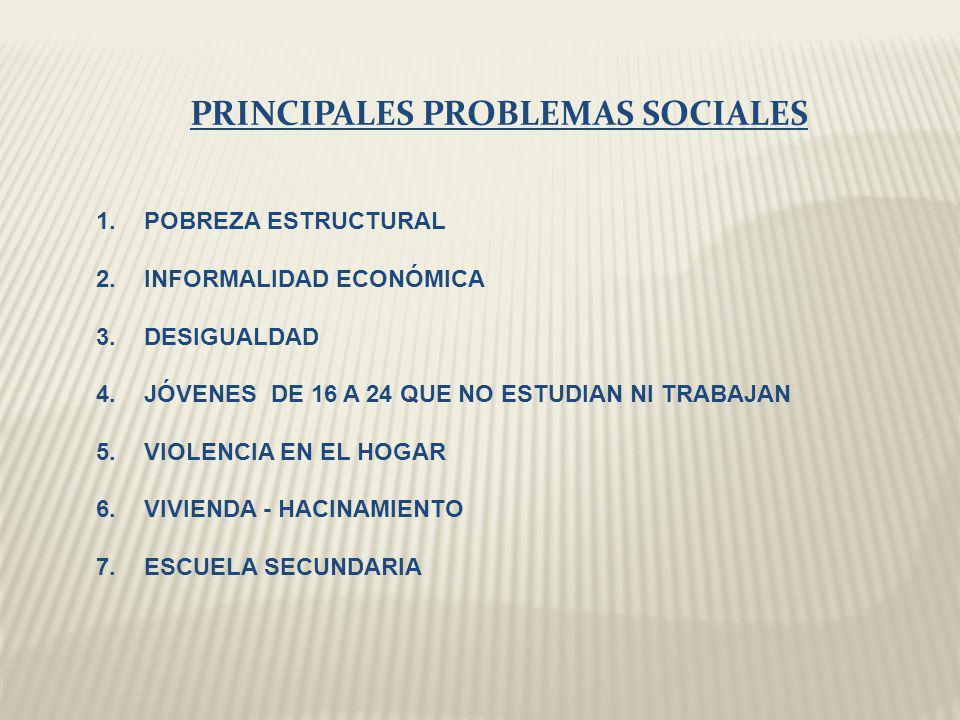 PRINCIPALES PROBLEMAS SOCIALES