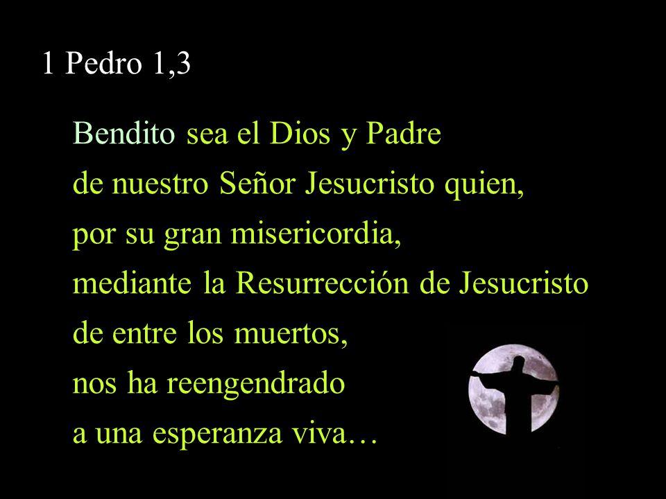 Bendito sea el Dios y Padre de nuestro Señor Jesucristo quien,