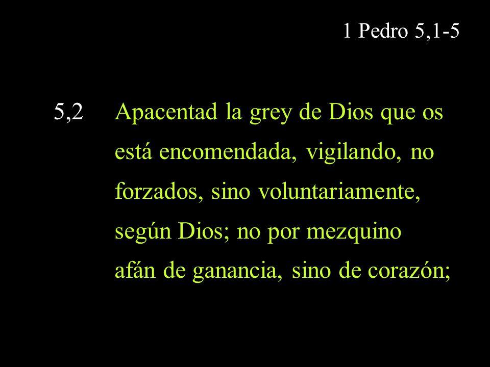 5,2 Apacentad la grey de Dios que os está encomendada, vigilando, no