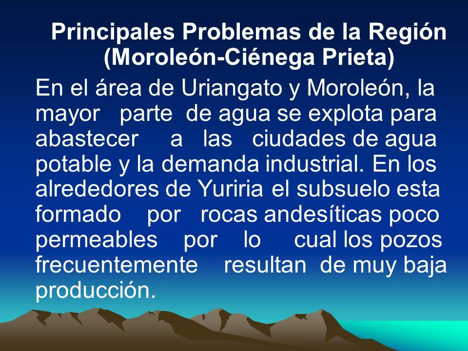 Principales Problemas de la Región (Moroleón-Ciénega Prieta)