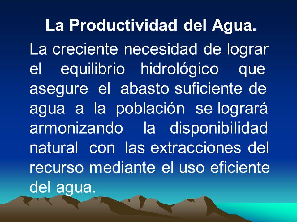La Productividad del Agua.