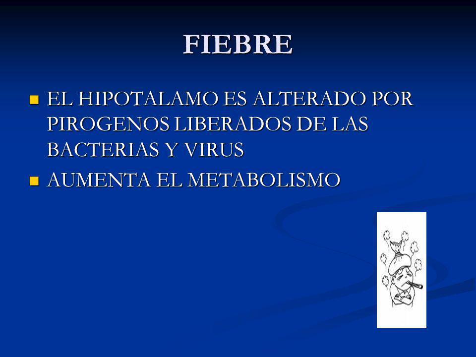 FIEBRE EL HIPOTALAMO ES ALTERADO POR PIROGENOS LIBERADOS DE LAS BACTERIAS Y VIRUS.