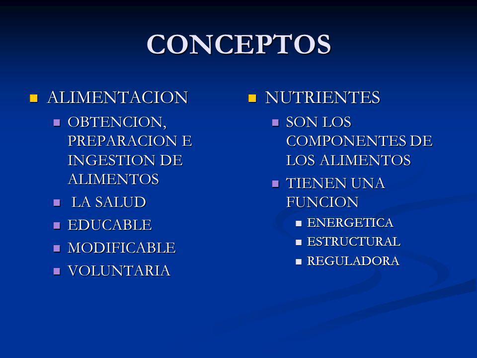 CONCEPTOS ALIMENTACION NUTRIENTES