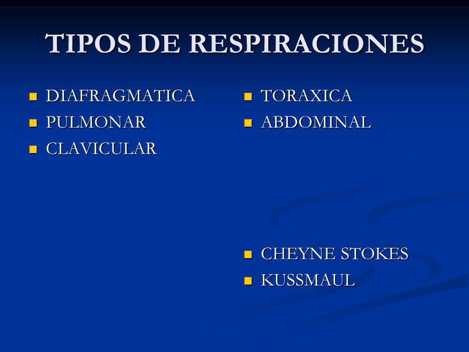 TIPOS DE RESPIRACIONES