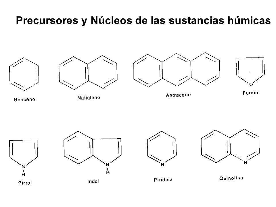 Precursores y Núcleos de las sustancias húmicas