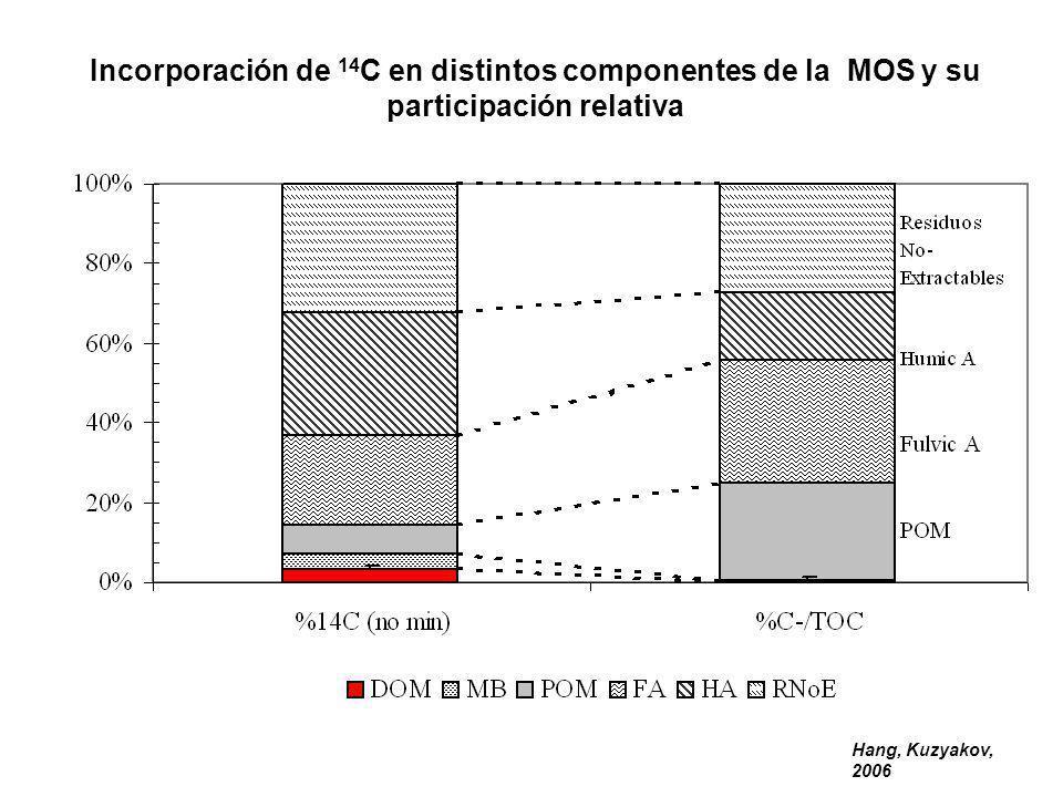 Incorporación de 14C en distintos componentes de la MOS y su participación relativa