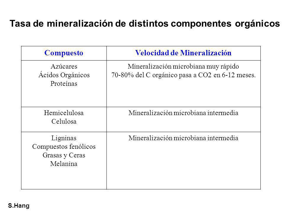 Velocidad de Mineralización