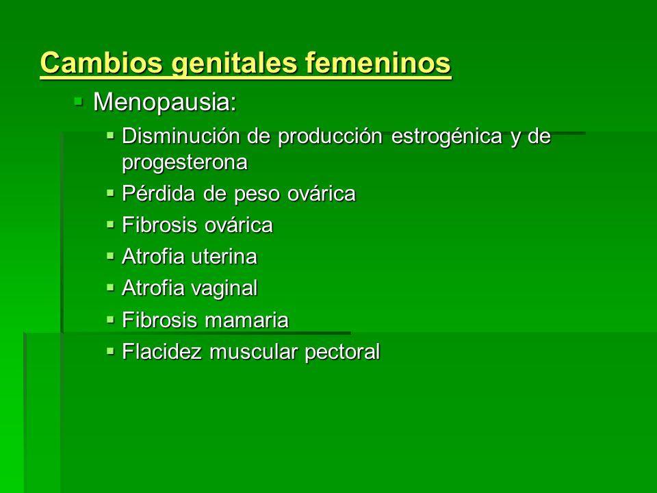 Cambios genitales femeninos