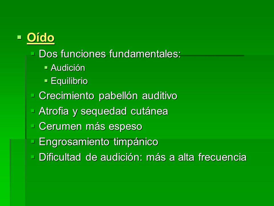 Oído Dos funciones fundamentales: Crecimiento pabellón auditivo