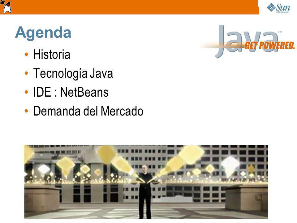 Agenda Historia Tecnología Java IDE : NetBeans Demanda del Mercado