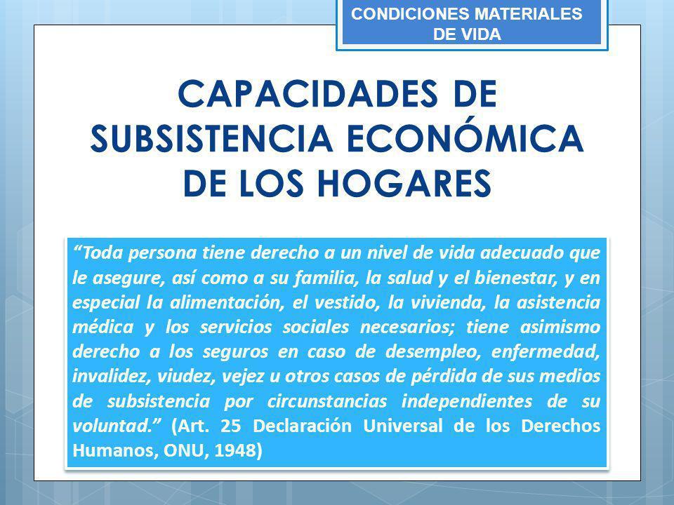 CAPACIDADES DE SUBSISTENCIA ECONÓMICA DE LOS HOGARES