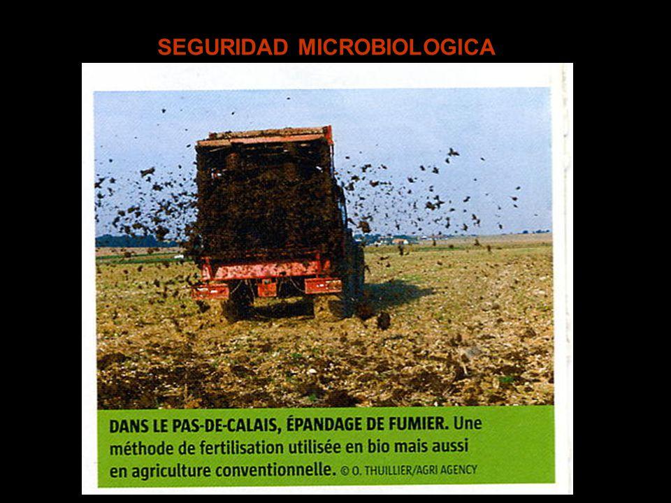 SEGURIDAD MICROBIOLOGICA