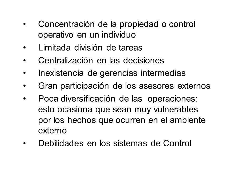 Concentración de la propiedad o control operativo en un individuo