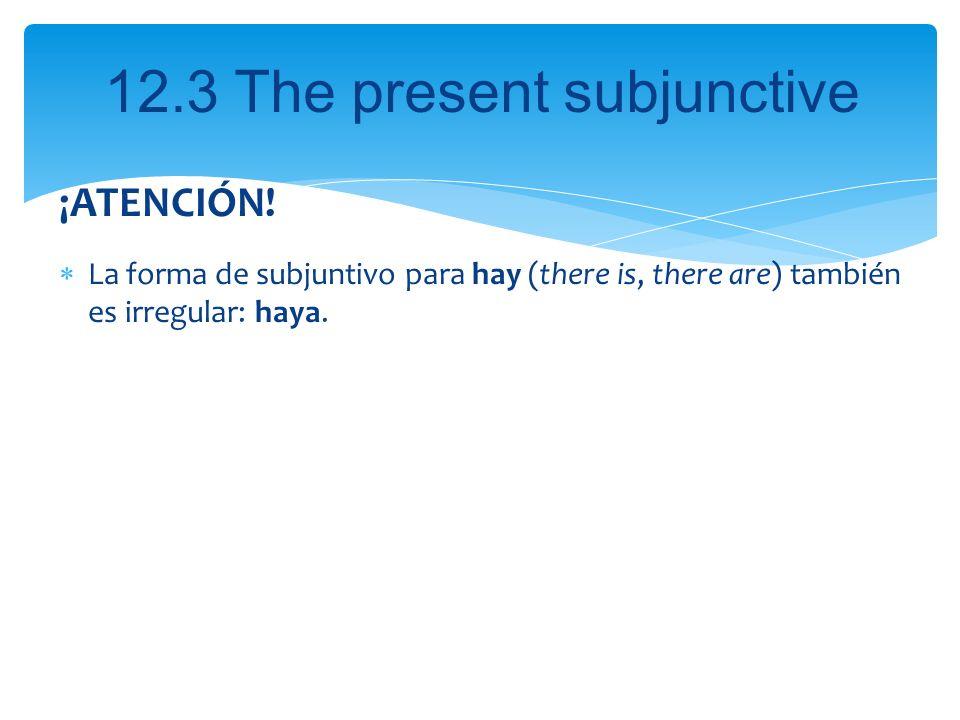 ¡ATENCIÓN! La forma de subjuntivo para hay (there is, there are) también es irregular: haya.