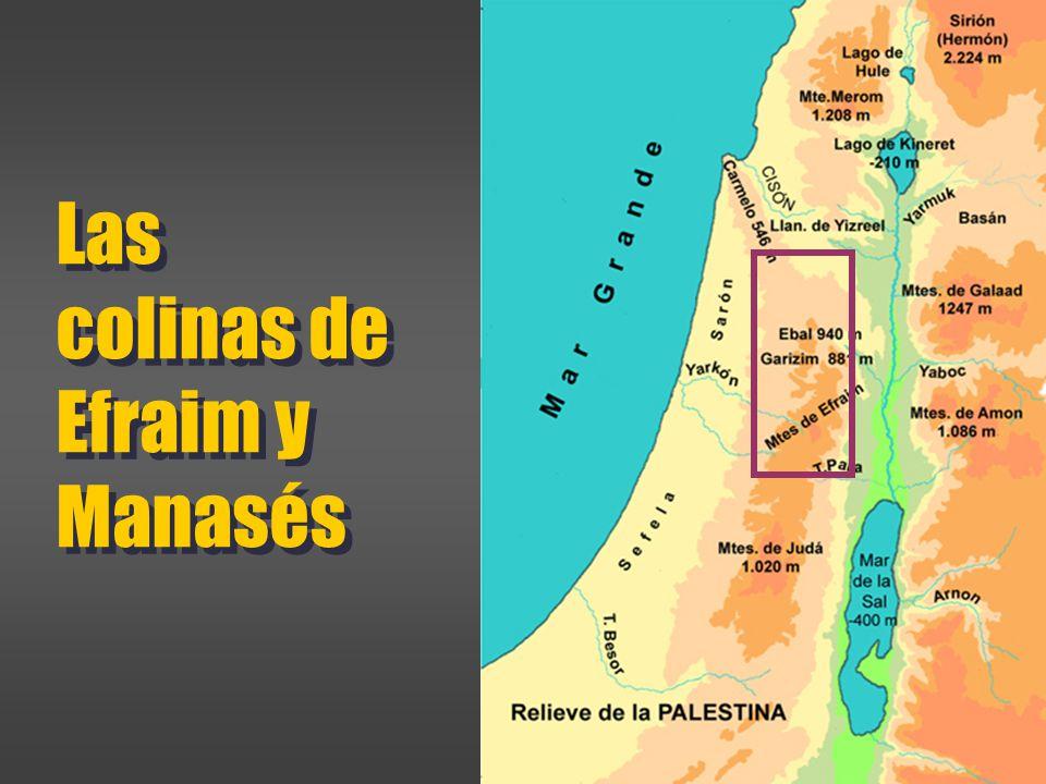 Las colinas de Efraim y Manasés