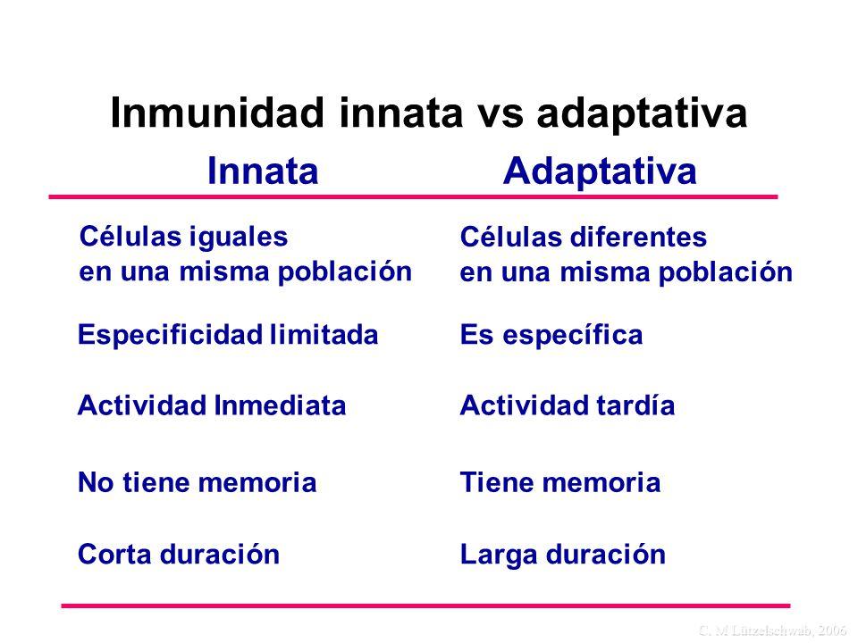 Inmunidad innata vs adaptativa