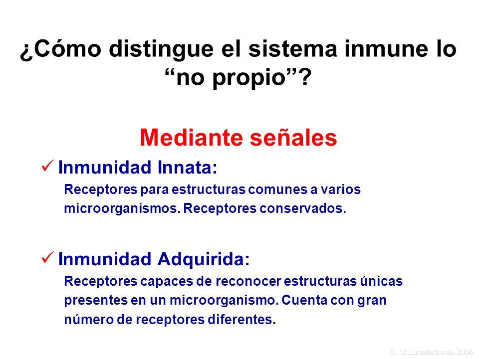 ¿Cómo distingue el sistema inmune lo no propio