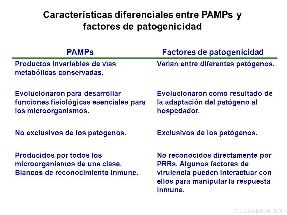 Características diferenciales entre PAMPs y factores de patogenicidad