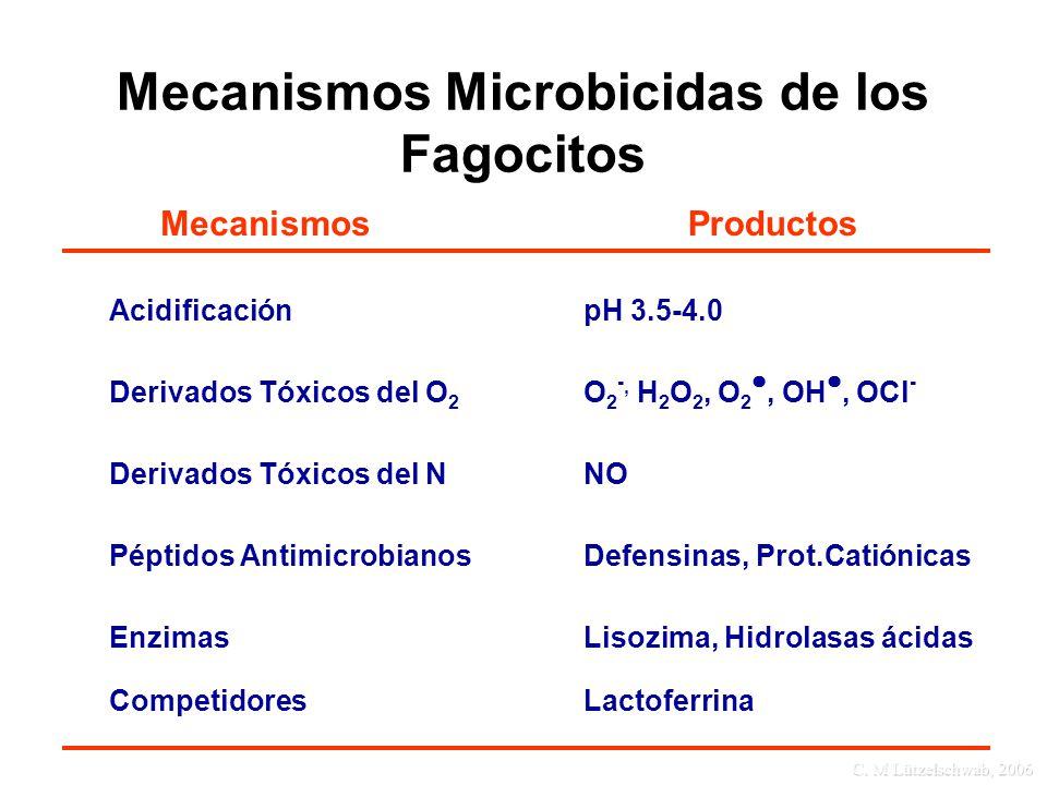 Mecanismos Microbicidas de los Fagocitos