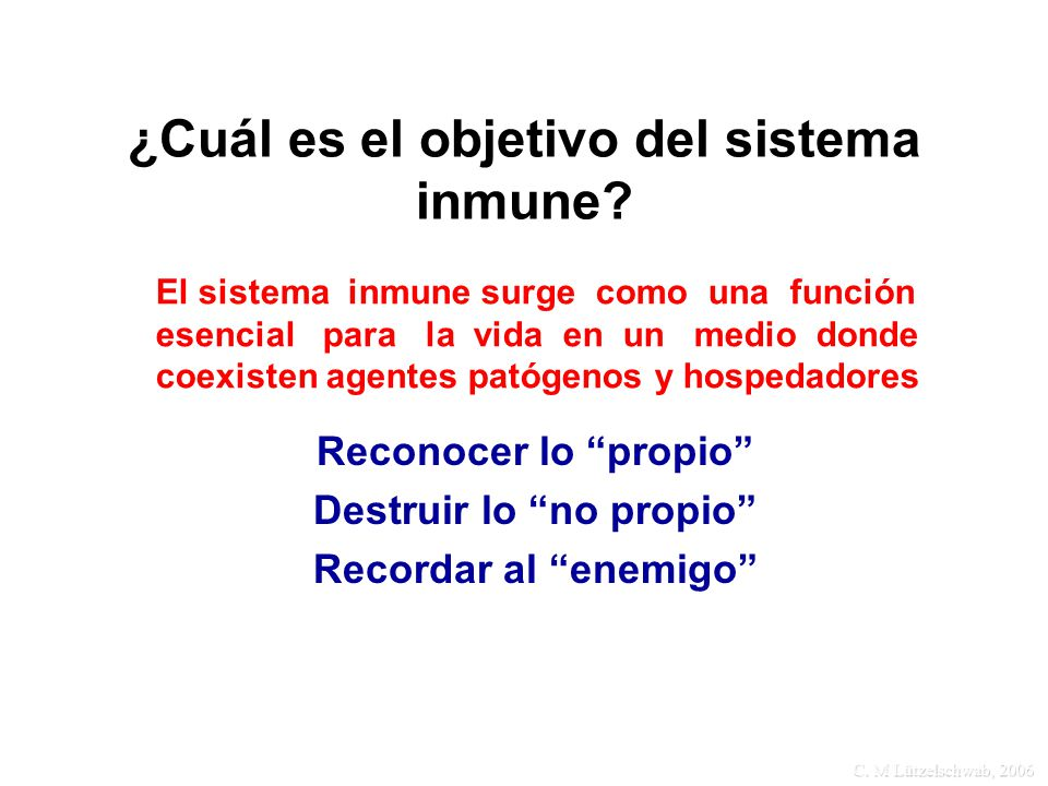¿Cuál es el objetivo del sistema inmune