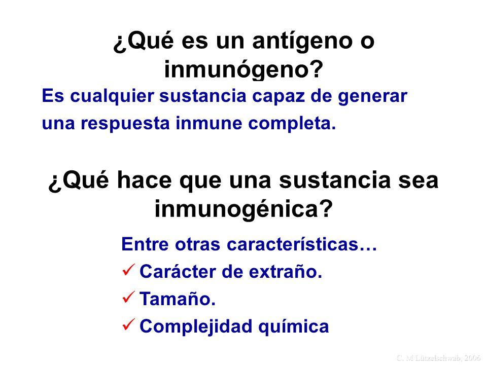 ¿Qué es un antígeno o inmunógeno