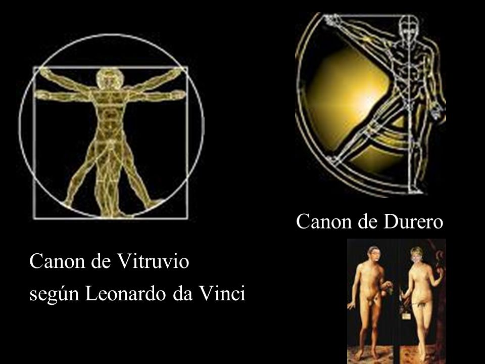 según Leonardo da Vinci