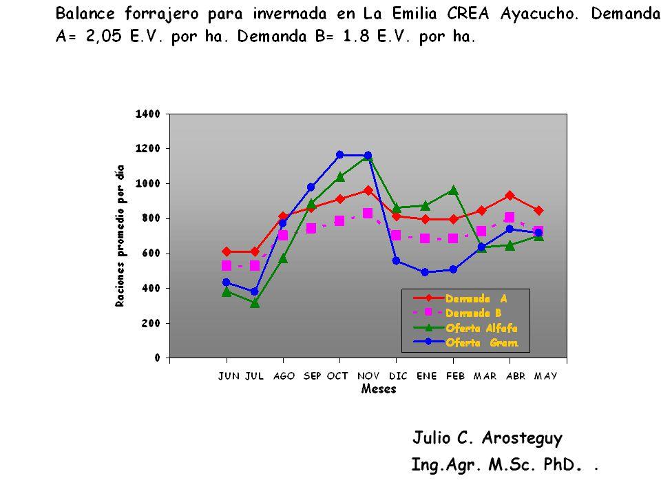 Julio C. Arosteguy Ing.Agr. M.Sc. PhD. .