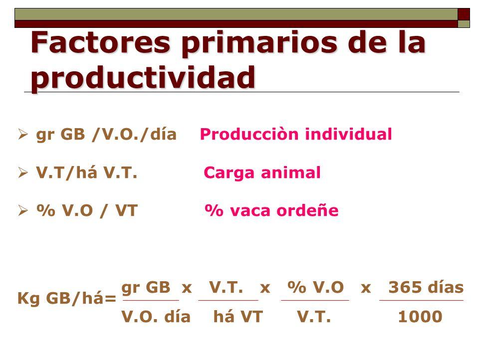 Factores primarios de la productividad