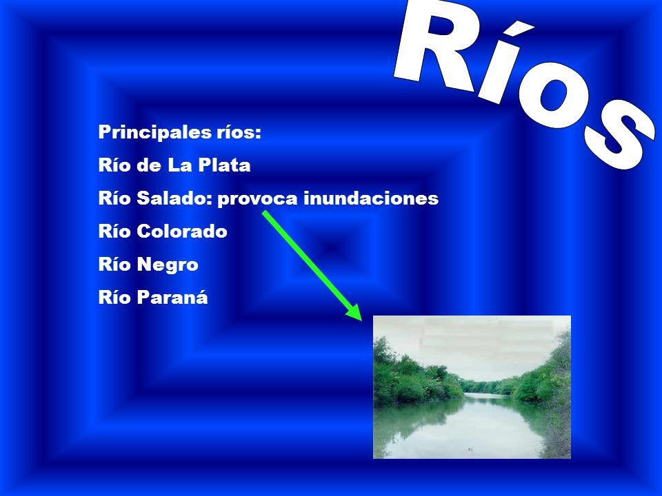 Ríos Principales ríos: Río de La Plata