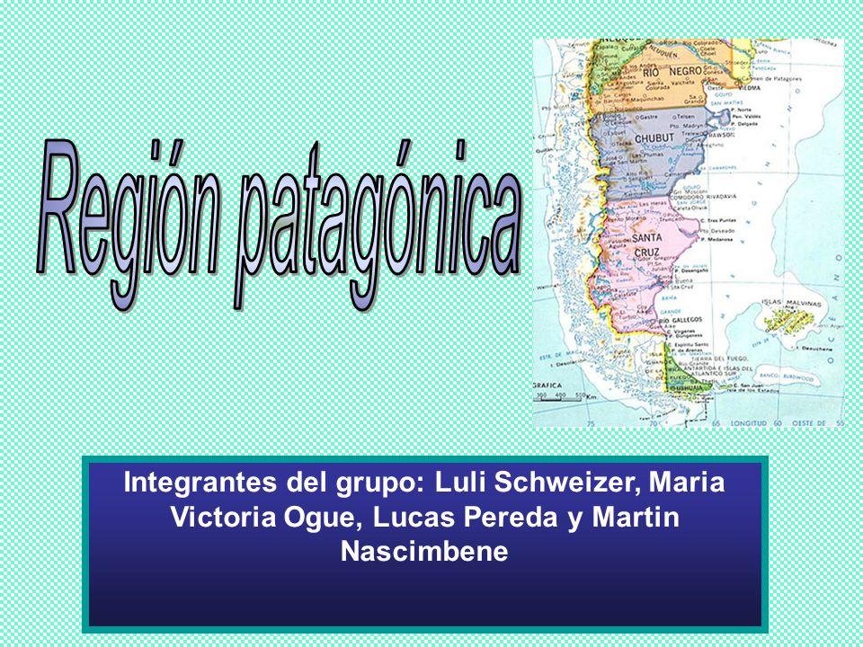 Región patagónica Integrantes del grupo: Luli Schweizer, Maria Victoria Ogue, Lucas Pereda y Martin Nascimbene.