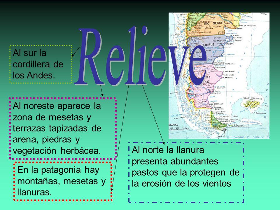 Relieve Al sur la cordillera de los Andes.