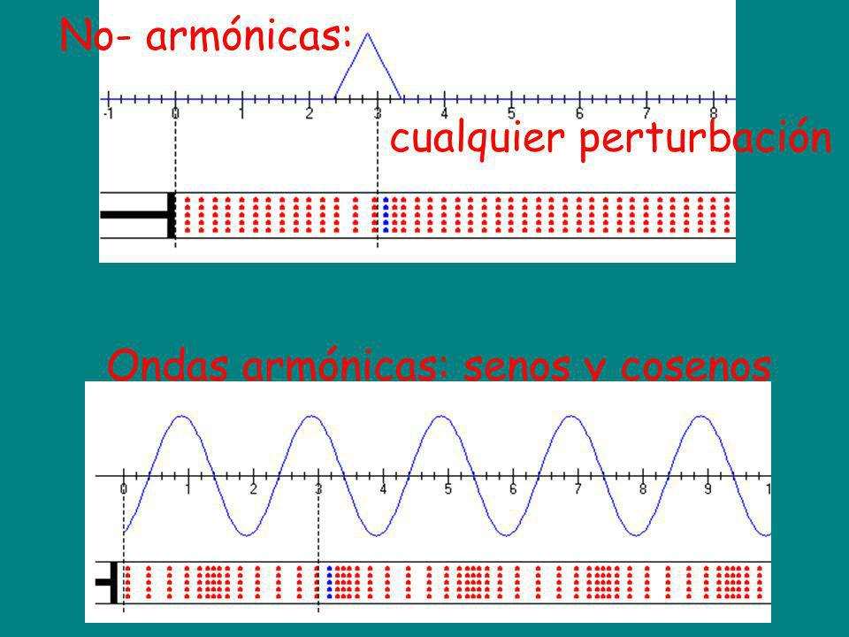 Ondas armónicas: senos y cosenos