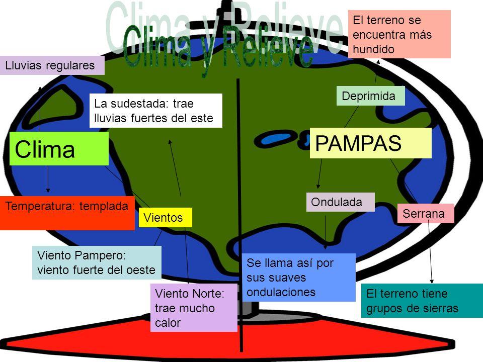 Clima y Relieve Clima PAMPAS El terreno se encuentra más hundido