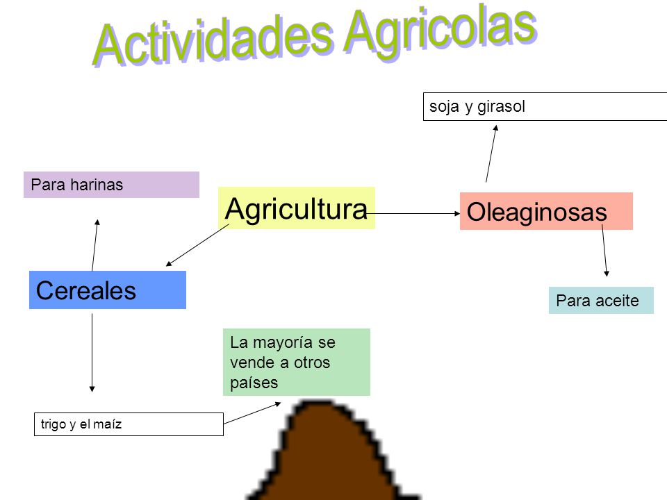 Actividades Agricolas