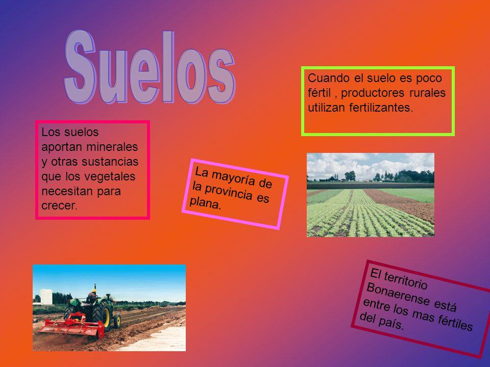 Suelos Cuando el suelo es poco fértil , productores rurales utilizan fertilizantes.