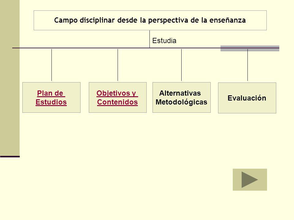 Campo disciplinar desde la perspectiva de la enseñanza